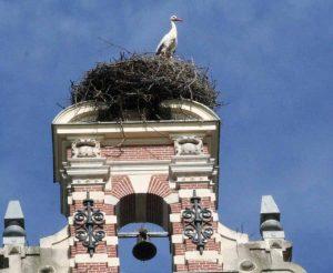 De Ooievaar op het dak