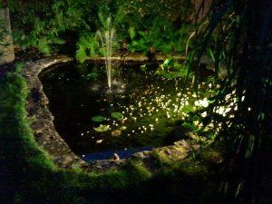 Tuinverlichting vijver Eindhoven